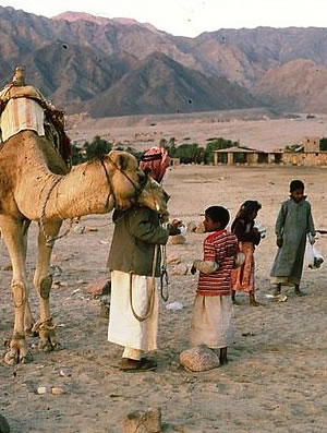 A Bedouin family