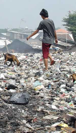 A dalit boy sifting through trash.