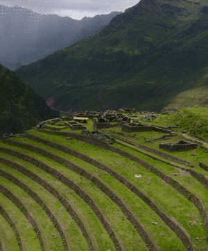 Inca terrace farming
